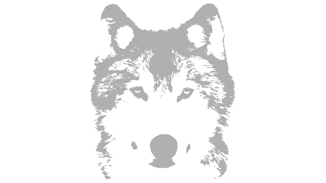 WolfVPro Background